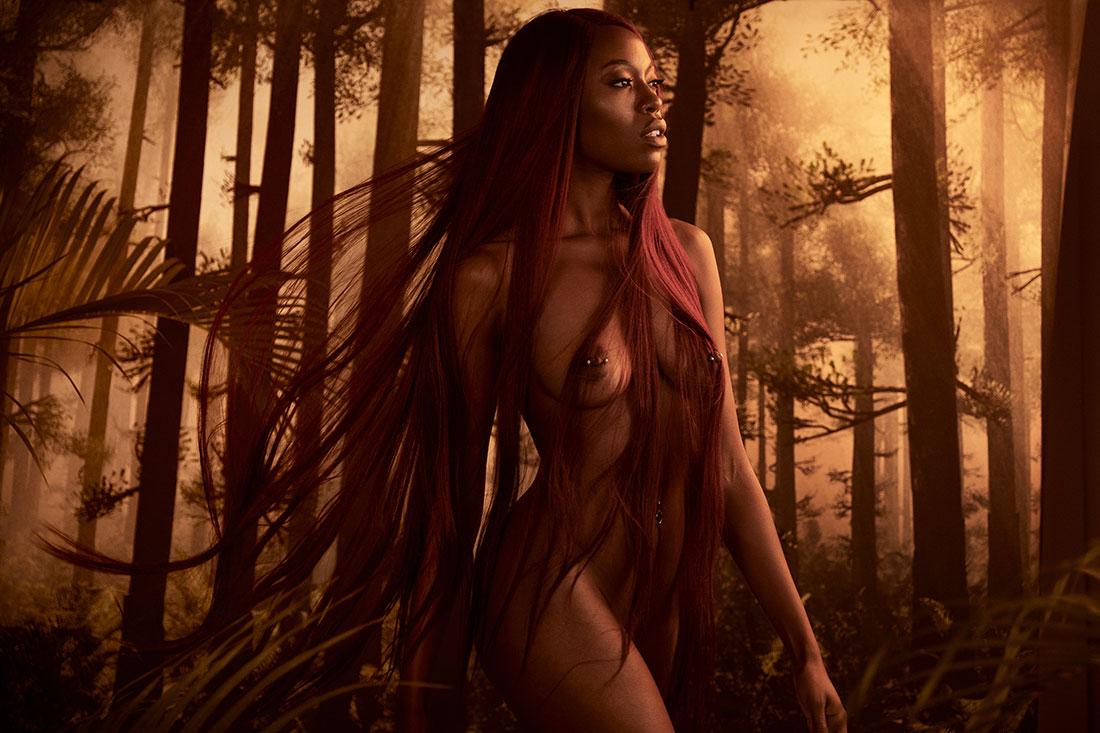 The Conceptual Fine ARt Nude - Ferns - Lindsay Adler Photography